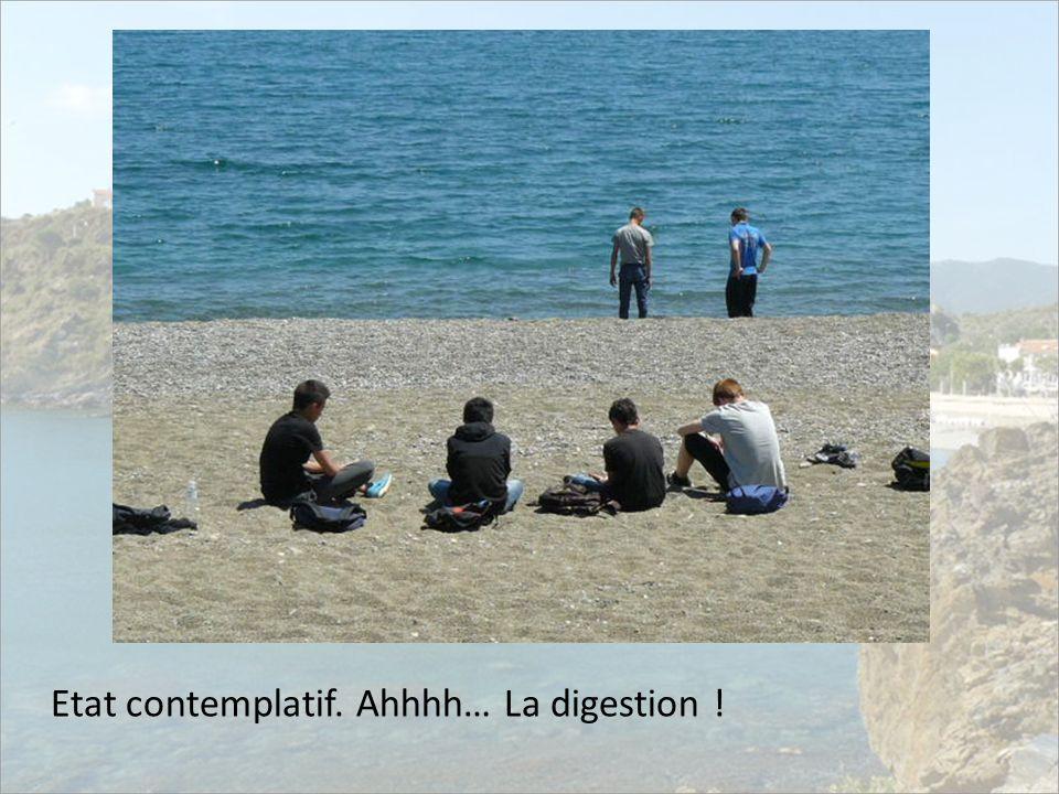 Etat contemplatif. Ahhhh… La digestion !