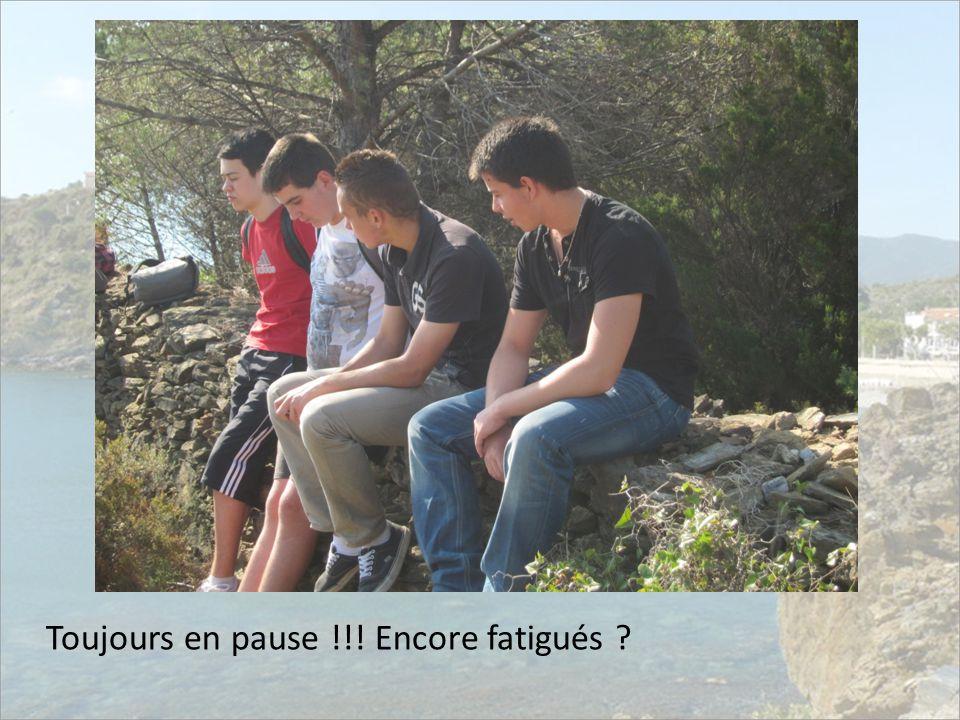 Toujours en pause !!! Encore fatigués ?