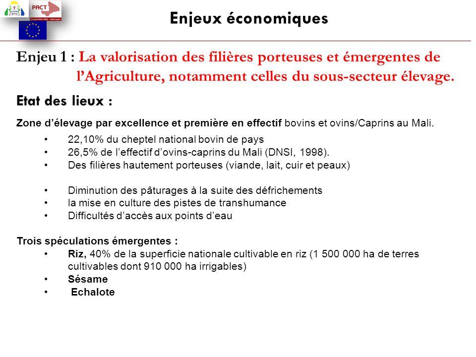 Enjeu 1 : La valorisation des filières porteuses et émergentes de l'Agriculture, notamment celles du sous-secteur élevage. Etat des lieux : Zone d'éle