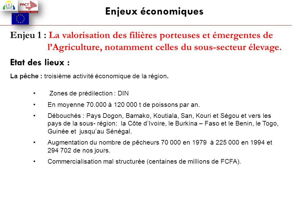 Enjeux économiques Enjeu 1 : La valorisation des filières porteuses et émergentes de l'Agriculture, notamment celles du sous-secteur élevage. Etat des