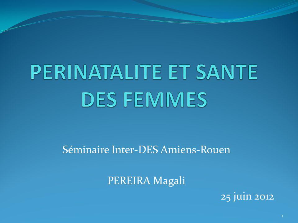 Séminaire Inter-DES Amiens-Rouen PEREIRA Magali 25 juin 2012 1