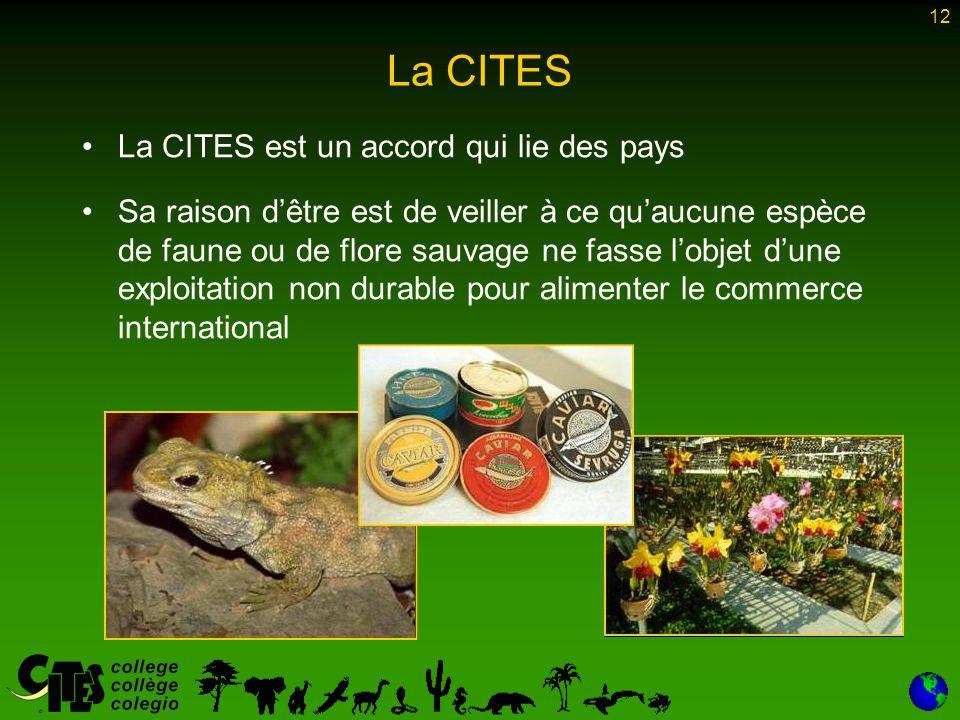 12 La CITES La CITES est un accord qui lie des pays Sa raison d'être est de veiller à ce qu'aucune espèce de faune ou de flore sauvage ne fasse l'obje