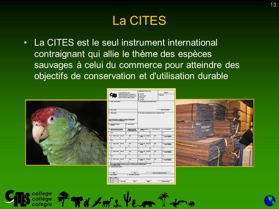 13 La CITES La CITES est le seul instrument international contraignant qui allie le thème des espèces sauvages à celui du commerce pour atteindre des