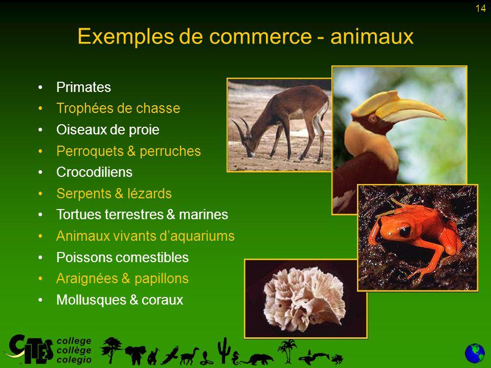 14 Exemples de commerce - animaux Primates Trophées de chasse Oiseaux de proie Perroquets & perruches Crocodiliens Serpents & lézards Tortues terrestr