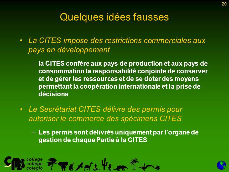 20 Quelques idées fausses La CITES impose des restrictions commerciales aux pays en développement – –la CITES confère aux pays de production et aux pa