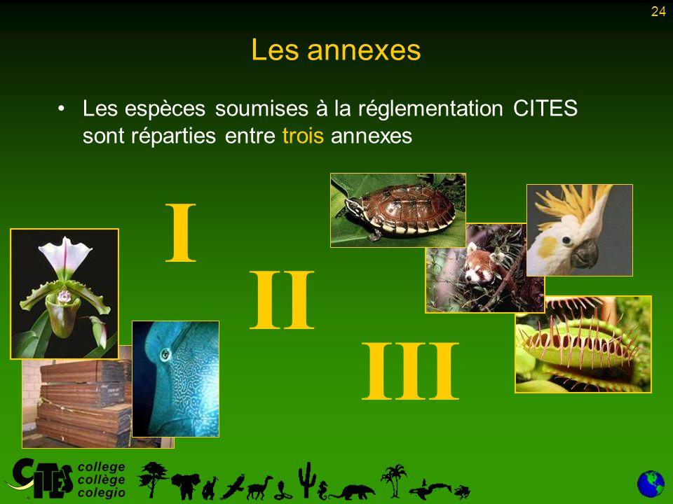 24 Les annexes Les espèces soumises à la réglementation CITES sont réparties entre trois annexes I II III