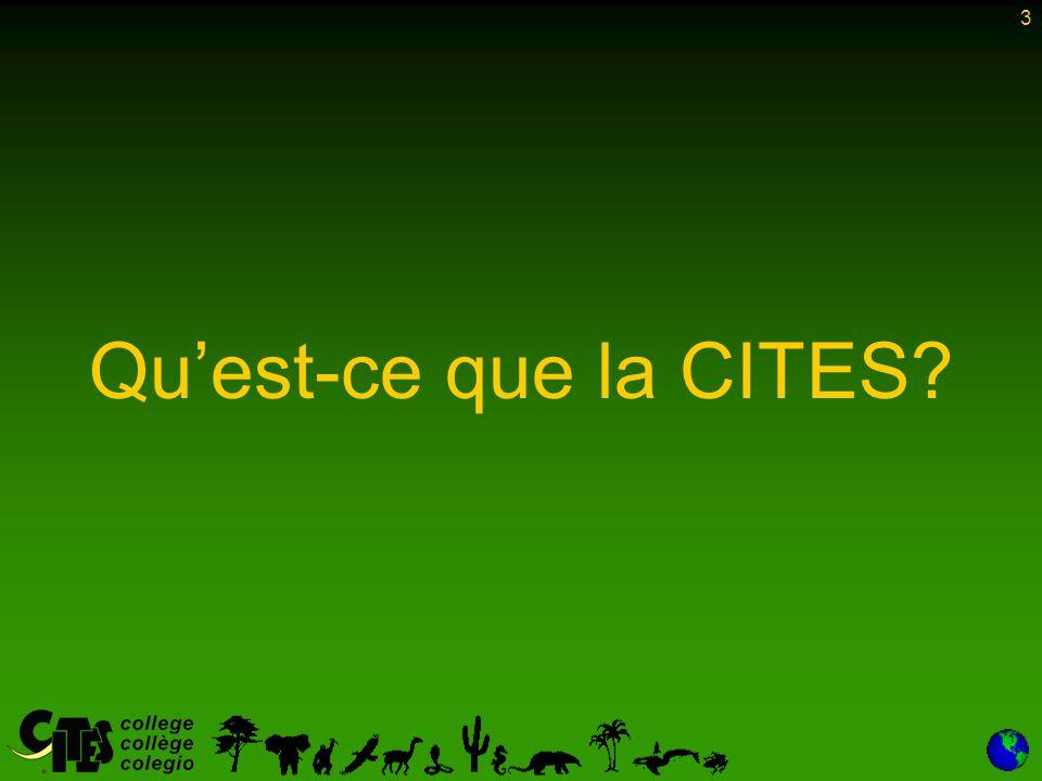 3 Qu'est-ce que la CITES?