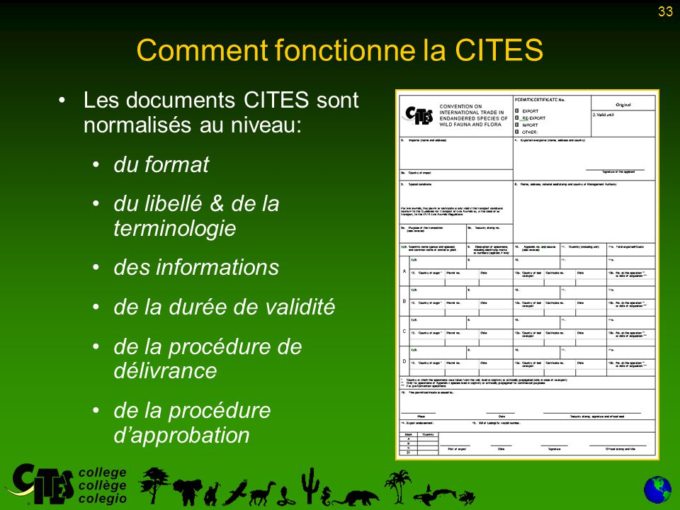 33 Comment fonctionne la CITES Les documents CITES sont normalisés au niveau: du format du libellé & de la terminologie des informations de la durée d