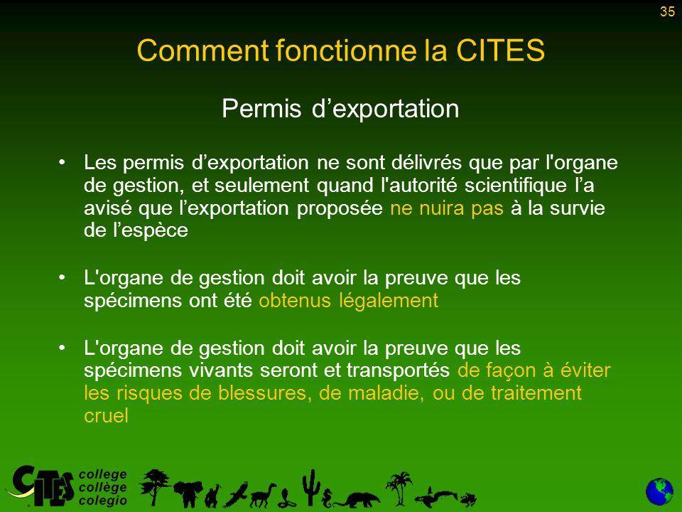 35 Comment fonctionne la CITES Permis d'exportation Les permis d'exportation ne sont délivrés que par l'organe de gestion, et seulement quand l'autori