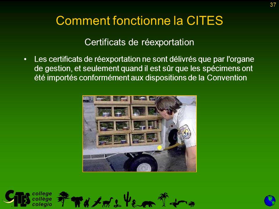 37 Comment fonctionne la CITES Certificats de réexportation Les certificats de réexportation ne sont délivrés que par l'organe de gestion, et seulemen