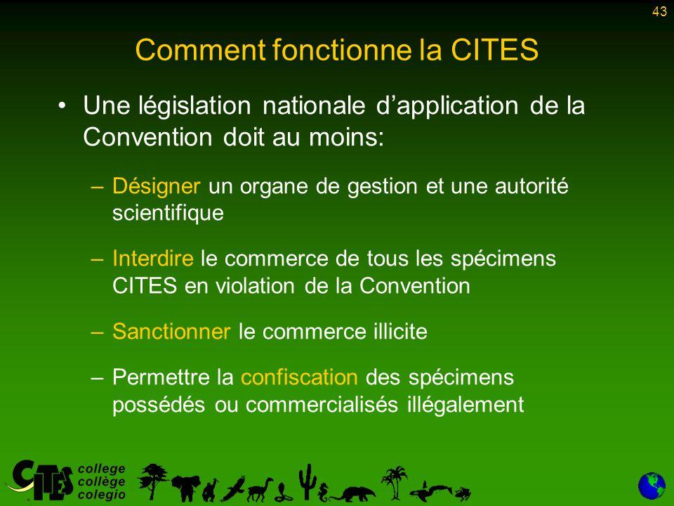 43 Comment fonctionne la CITES Une législation nationale d'application de la Convention doit au moins: –Désigner un organe de gestion et une autorité