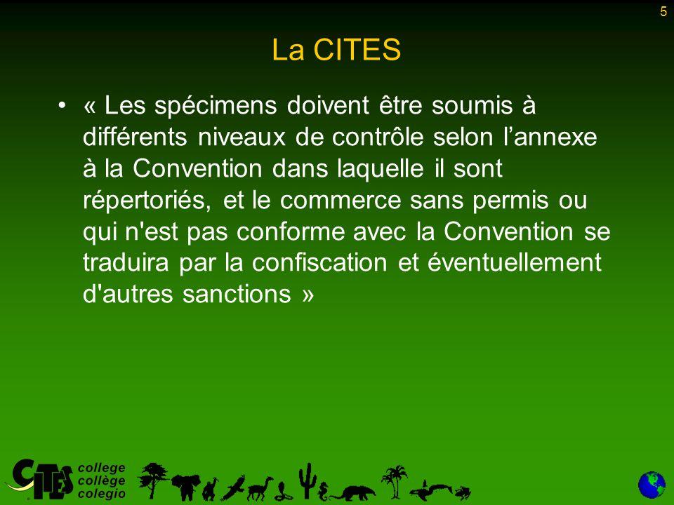 5 La CITES « Les spécimens doivent être soumis à différents niveaux de contrôle selon l'annexe à la Convention dans laquelle il sont répertoriés, et l