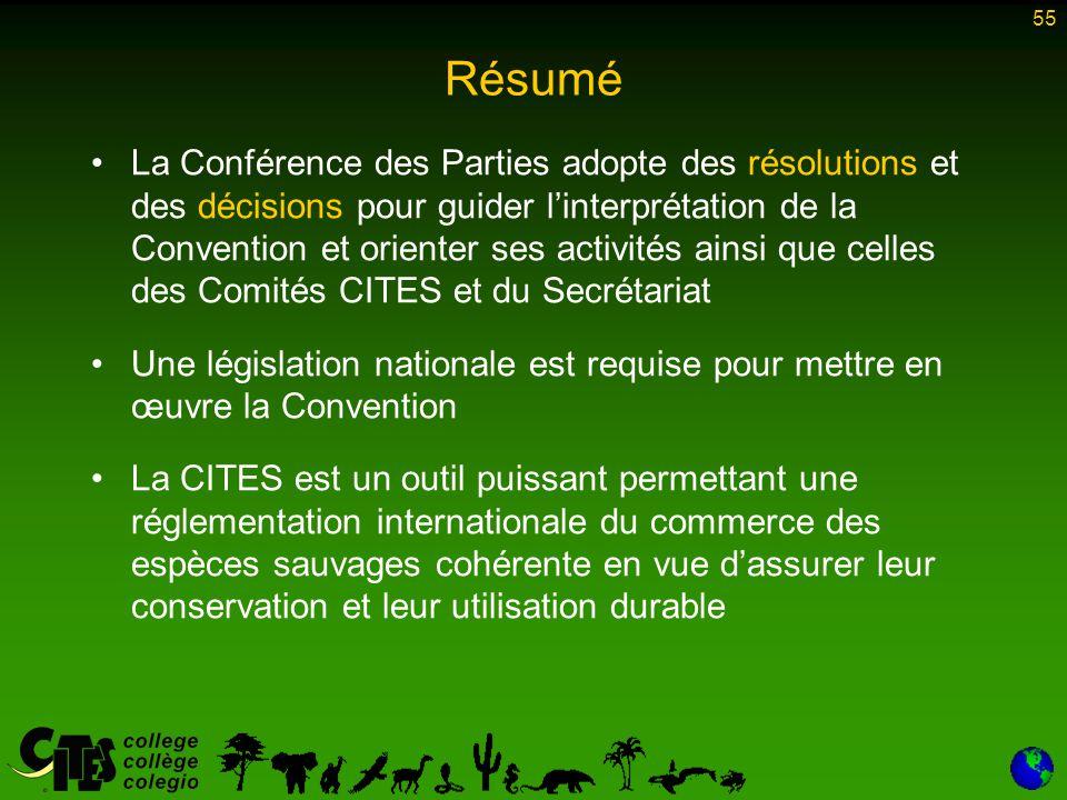 55 La Conférence des Parties adopte des résolutions et des décisions pour guider l'interprétation de la Convention et orienter ses activités ainsi que