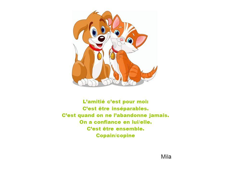 L'amitié c'est pour moi: C'est être inséparables. C'est quand on ne l'abandonne jamais. On a confiance en lui/elle. C'est être ensemble. Copain/copine
