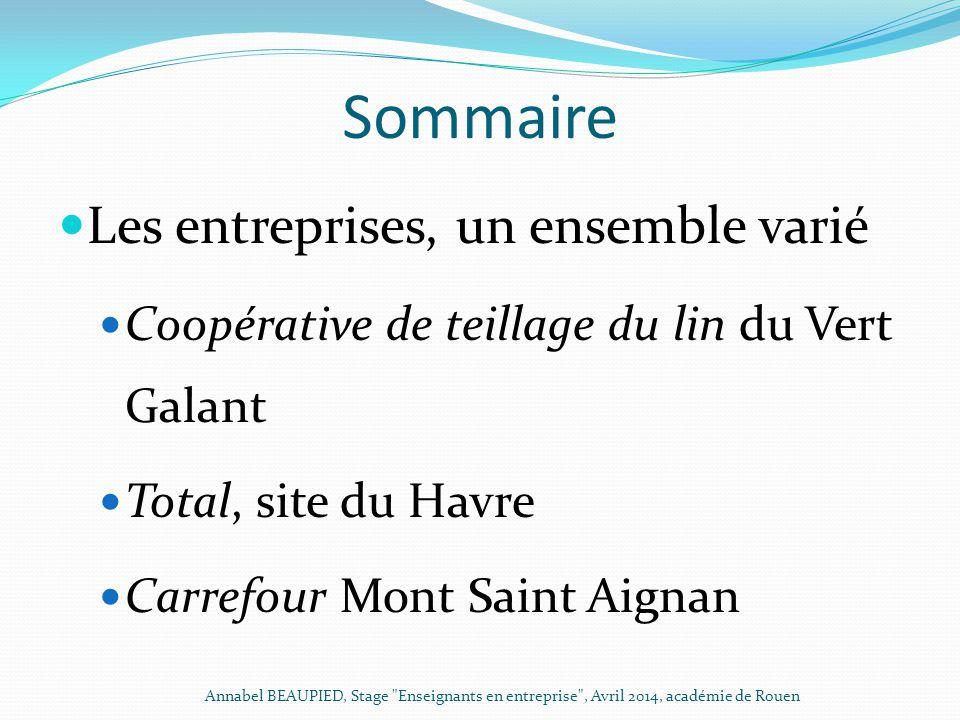 Sommaire Les entreprises, un ensemble varié Coopérative de teillage du lin du Vert Galant Total, site du Havre Carrefour Mont Saint Aignan Annabel BEA