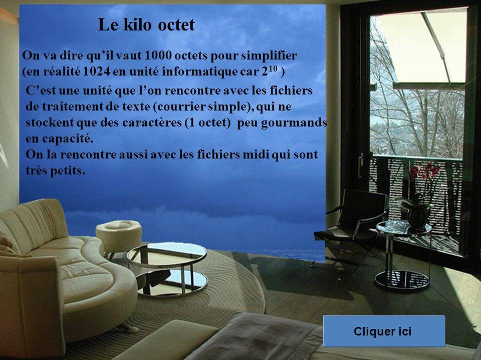 Le kilo octet C'est une unité que l'on rencontre avec les fichiers de traitement de texte (courrier simple), qui ne stockent que des caractères (1 octet) peu gourmands en capacité.