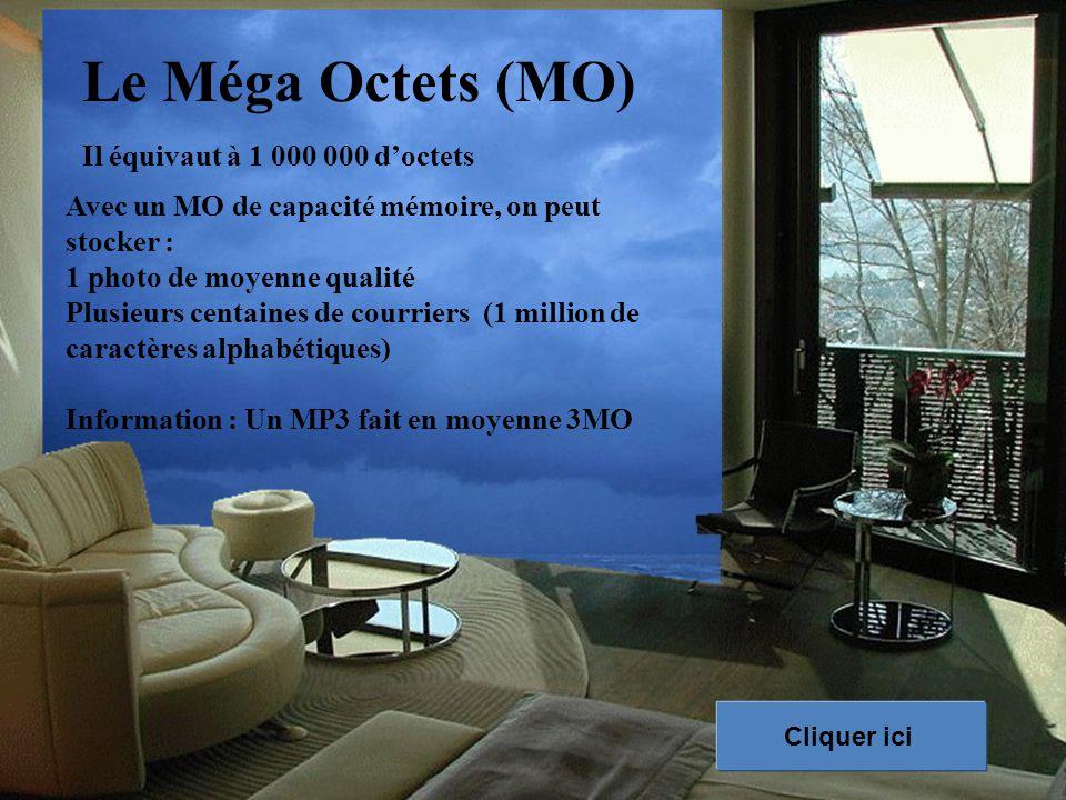 Le Méga Octets (MO) Il équivaut à 1 000 000 d'octets Avec un MO de capacité mémoire, on peut stocker : 1 photo de moyenne qualité Plusieurs centaines de courriers (1 million de caractères alphabétiques) Information : Un MP3 fait en moyenne 3MO Cliquer ici
