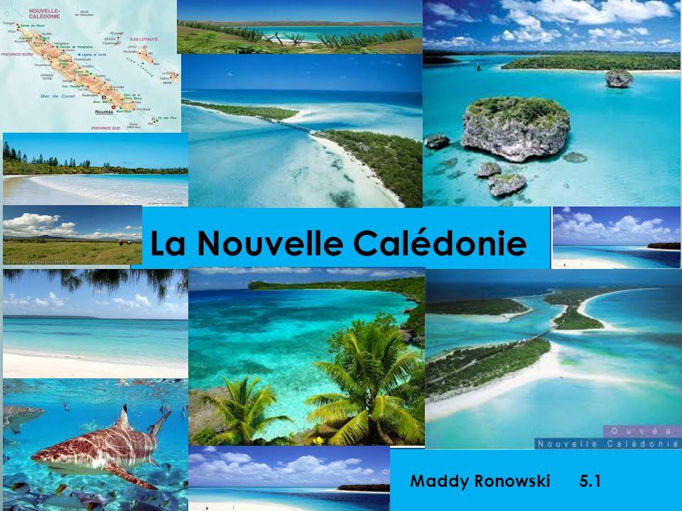 La Nouvelle Calédonie Maddy Ronowski 5.1