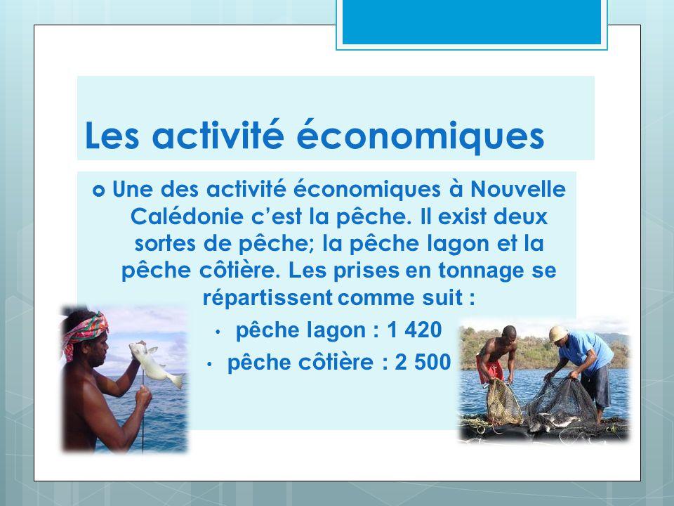 Les activité économiques  Une des activité économiques à Nouvelle Calédonie c'est la pêche. Il exist deux sortes de pêche; la pêche lagon et la pêche