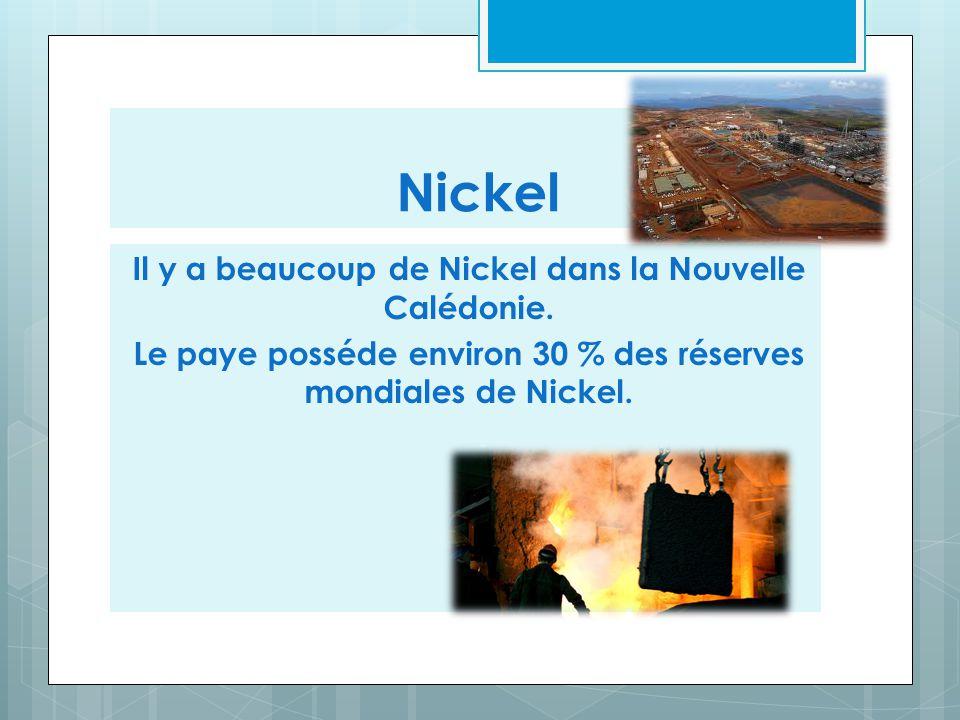 Il y a beaucoup de Nickel dans la Nouvelle Calédonie. Le paye posséde environ 30 % des réserves mondiales de Nickel. Nickel