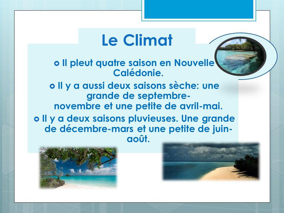  Il pleut quatre saison en Nouvelle Calédonie.  Il y a aussi deux saisons sèche: une grande de septembre- novembre et une petite de avril-mai.  Il