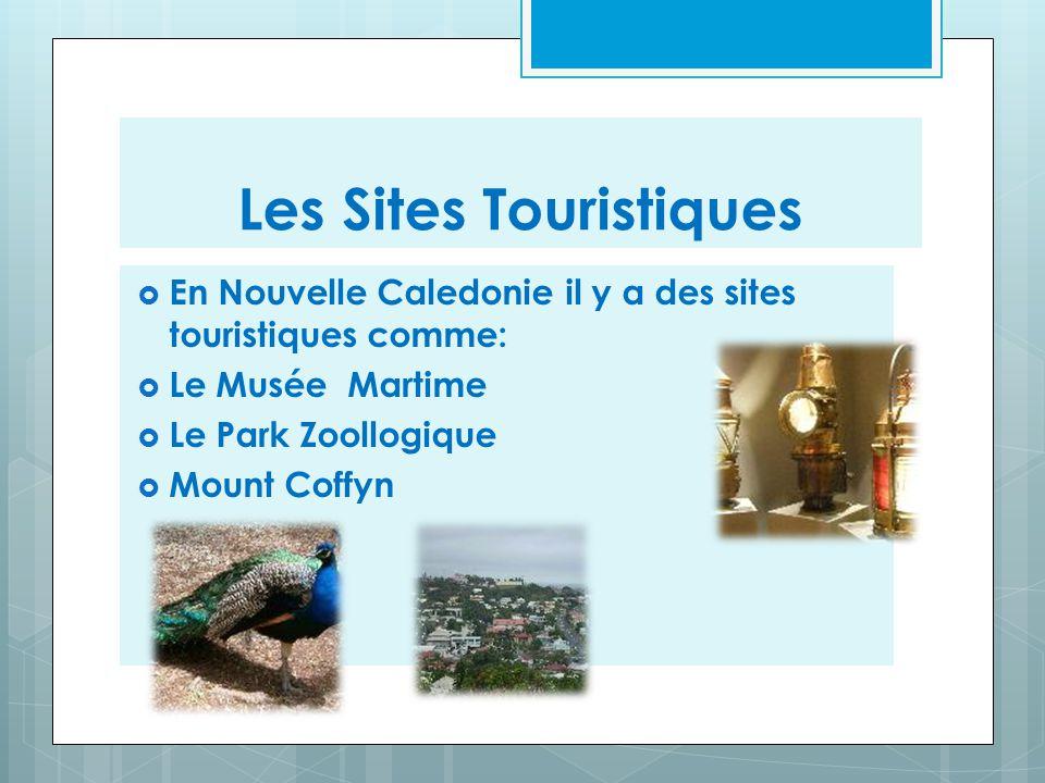 Les Sites Touristiques  En Nouvelle Caledonie il y a des sites touristiques comme:  Le Musée Martime  Le Park Zoollogique  Mount Coffyn