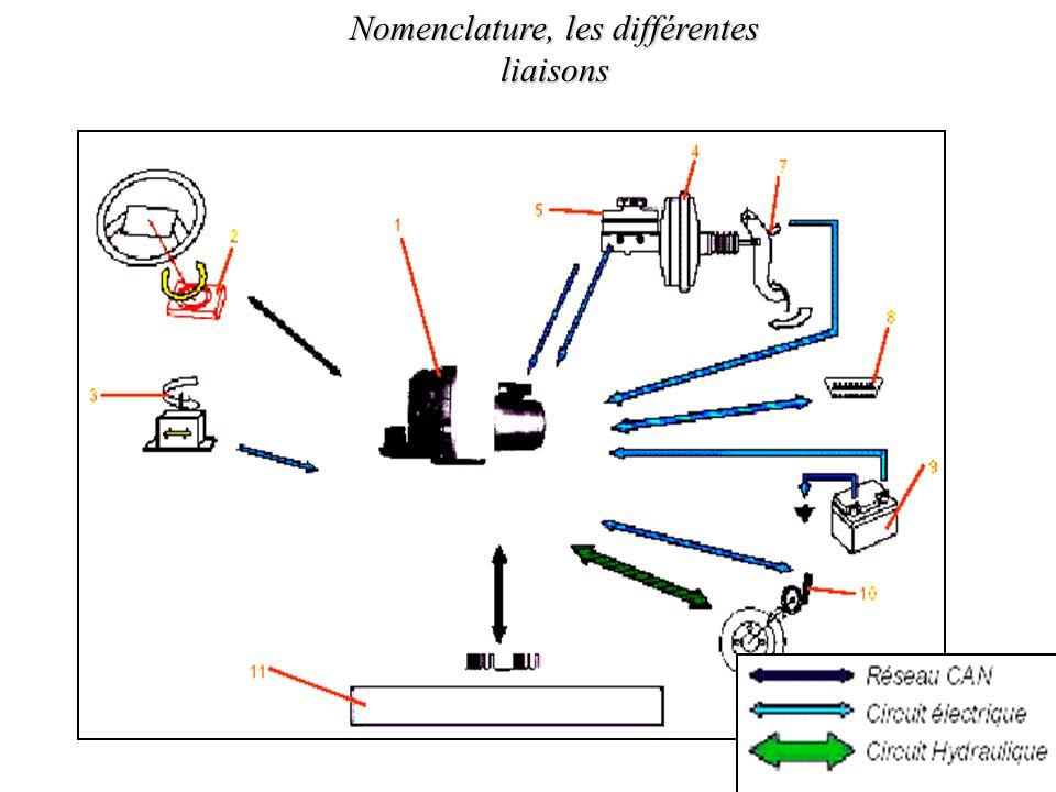 Nomenclature, les différentes liaisons