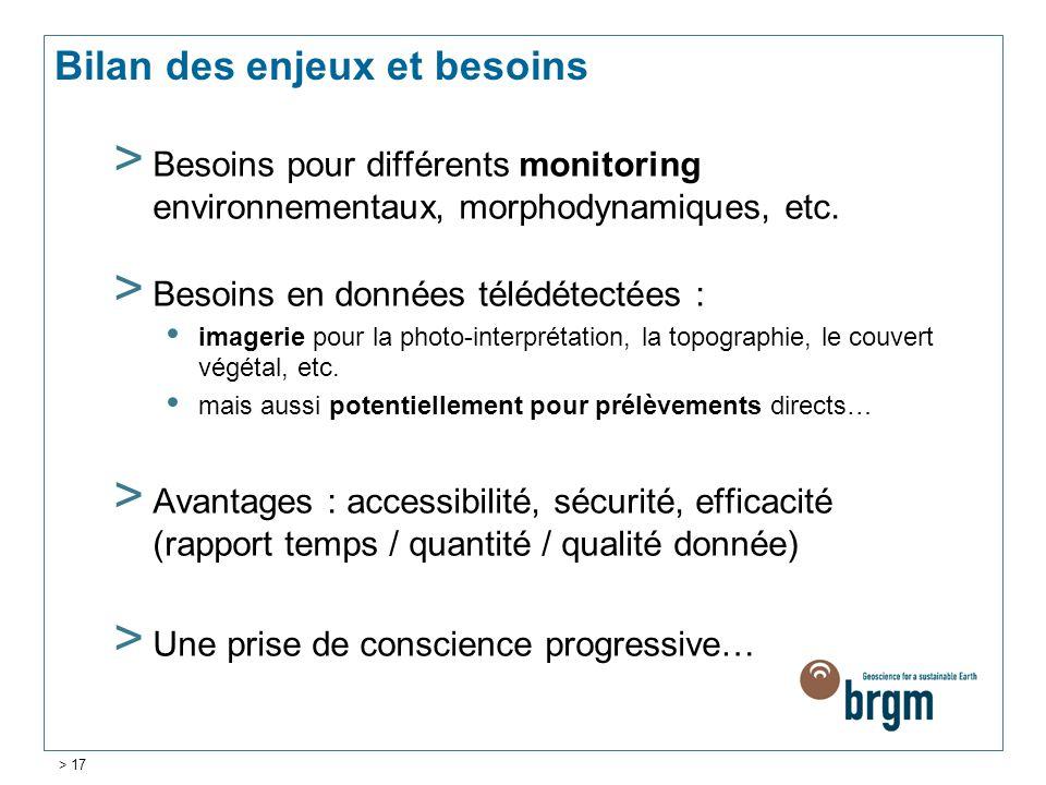 Bilan des enjeux et besoins > Besoins pour différents monitoring environnementaux, morphodynamiques, etc. > Besoins en données télédétectées : imageri