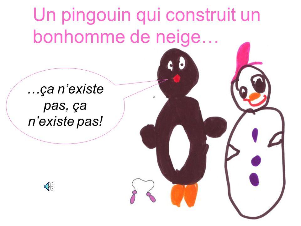 …ça n'existe pas, ça n'existe pas! Un pingouin qui construit un bonhomme de neige…