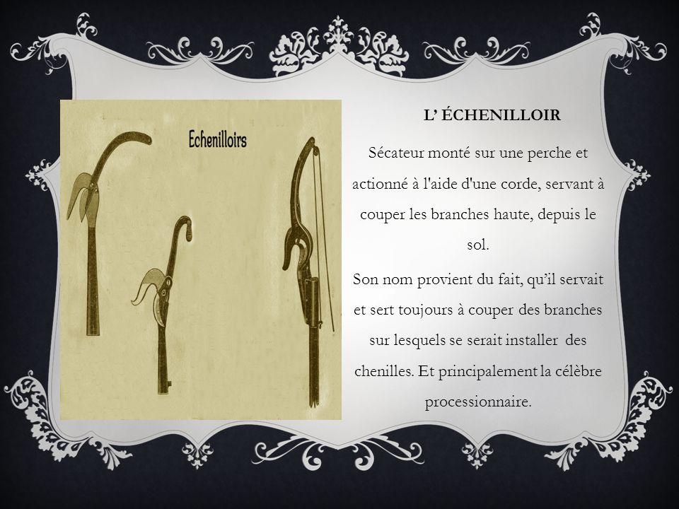 L' ÉCHENILLOIR Sécateur monté sur une perche et actionné à l'aide d'une corde, servant à couper les branches haute, depuis le sol. Son nom provient du