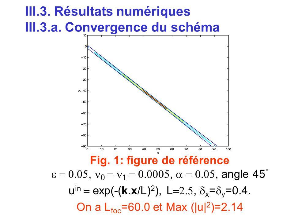 III.3. Résultats numériques III.3.a. Convergence du schéma Fig. 1: figure de référence , 0  1 , , angle 45 ° u in  exp(-(