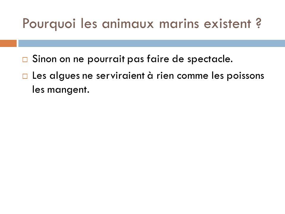 Pourquoi les animaux marins existent ?  Sinon on ne pourrait pas faire de spectacle.  Les algues ne serviraient à rien comme les poissons les mangen