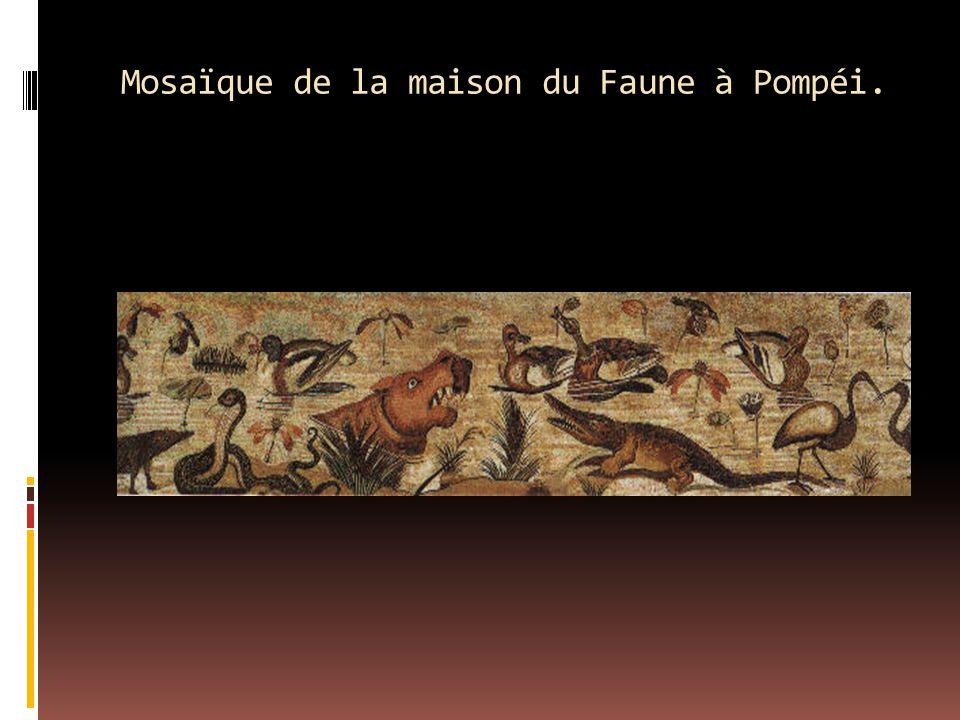 Mosaïque de la maison du Faune à Pompéi.