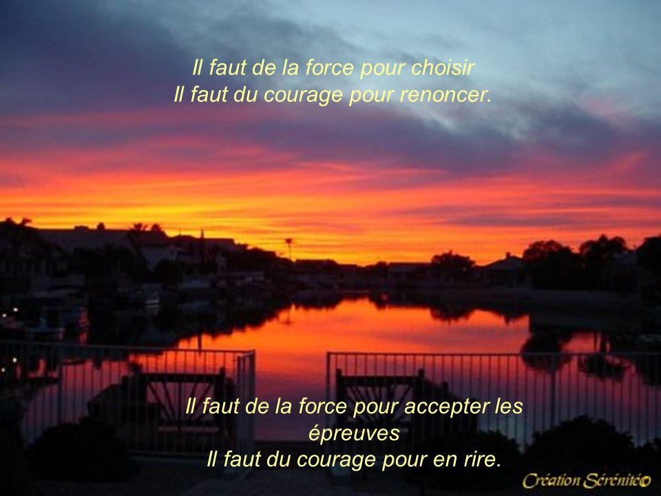 Il faut de la force pour avancer Il faut du courage pour accepter de s'être trompé. Il faut de la force pour affronter le danger Il faut du courage po