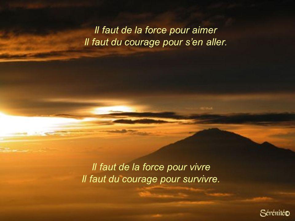 Il faut de la force pour calmer la peine d'un ami Il faut du courage pour endurer sa propre souffrance. Il faut de la force pour endurer l'injustice I