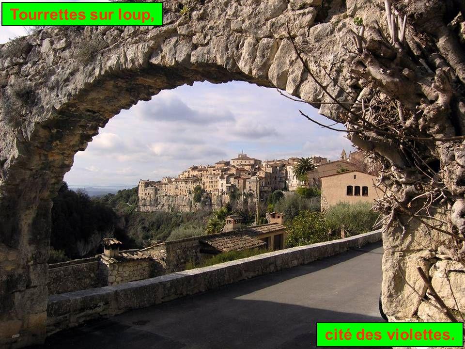La vallée du Loup, qui serpente entre Grasse et Vence, compte un certain nombre de bourgades pittoresques, dont Tourrettes, cité médiévale établie sur un éperon rocheux dominant la Côte d'Azur.