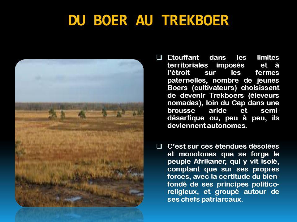 DU BOER AU TREKBOER  Etouffant dans les limites territoriales imposés et à l'étroit sur les fermes paternelles, nombre de jeunes Boers (cultivateurs)