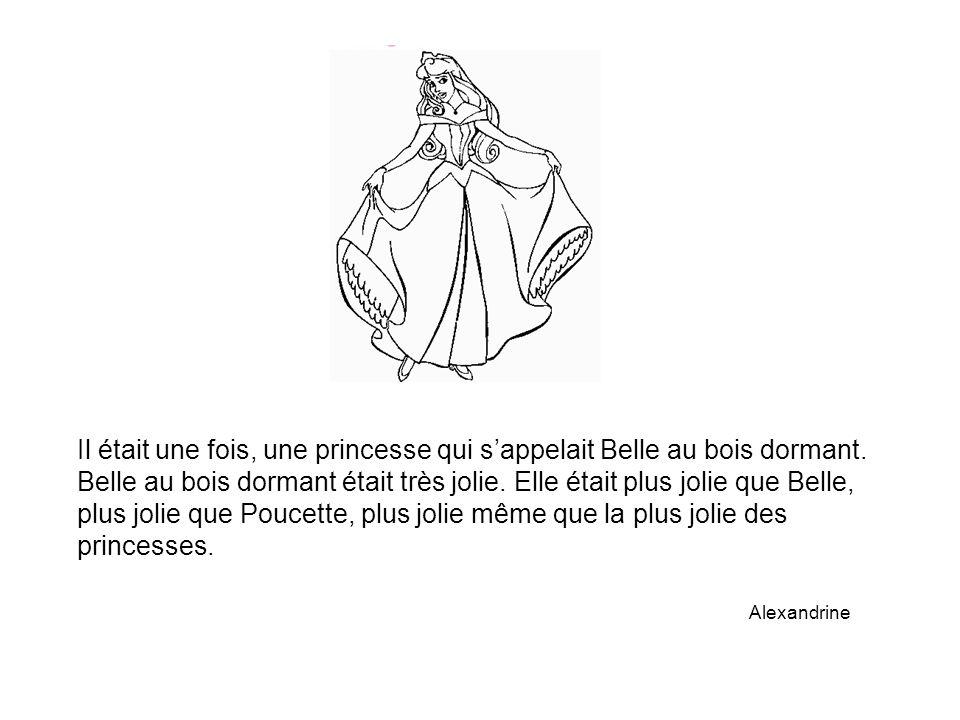 Il était une fois, une princesse qui s'appelait Belle au bois dormant. Belle au bois dormant était très jolie. Elle était plus jolie que Belle, plus j