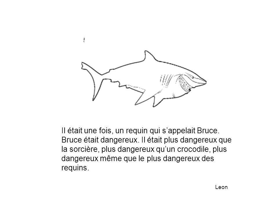 Il était une fois, un requin qui s'appelait Bruce. Bruce était dangereux. Il était plus dangereux que la sorcière, plus dangereux qu'un crocodile, plu