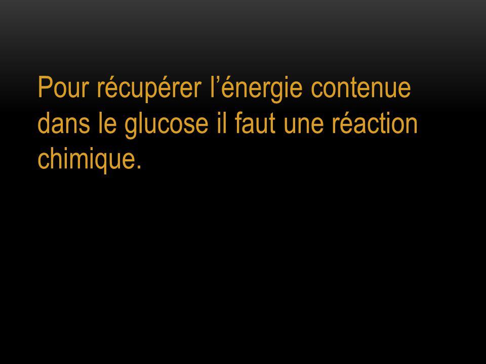 Pour récupérer l'énergie contenue dans le glucose il faut une réaction chimique.