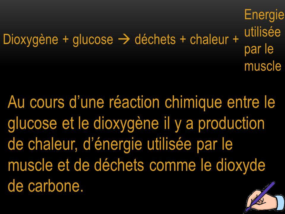 Dioxygène + glucose  déchets + chaleur + Energie utilisée par le muscle Au cours d'une réaction chimique entre le glucose et le dioxygène il y a prod