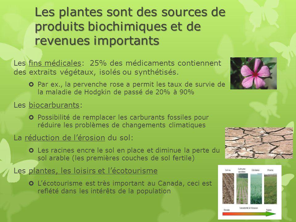 Les plantes sont des sources de produits biochimiques et de revenues importants Les fins médicales: 25% des médicaments contiennent des extraits végétaux, isolés ou synthétisés.