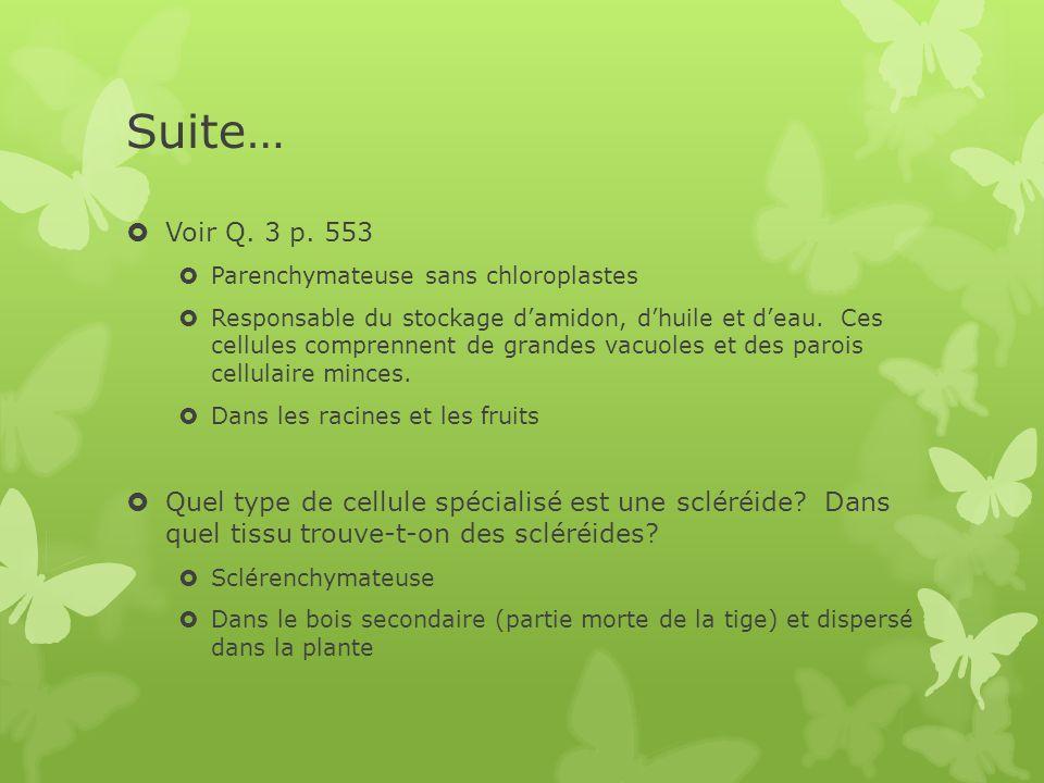 Suite…  Voir Q.3 p.
