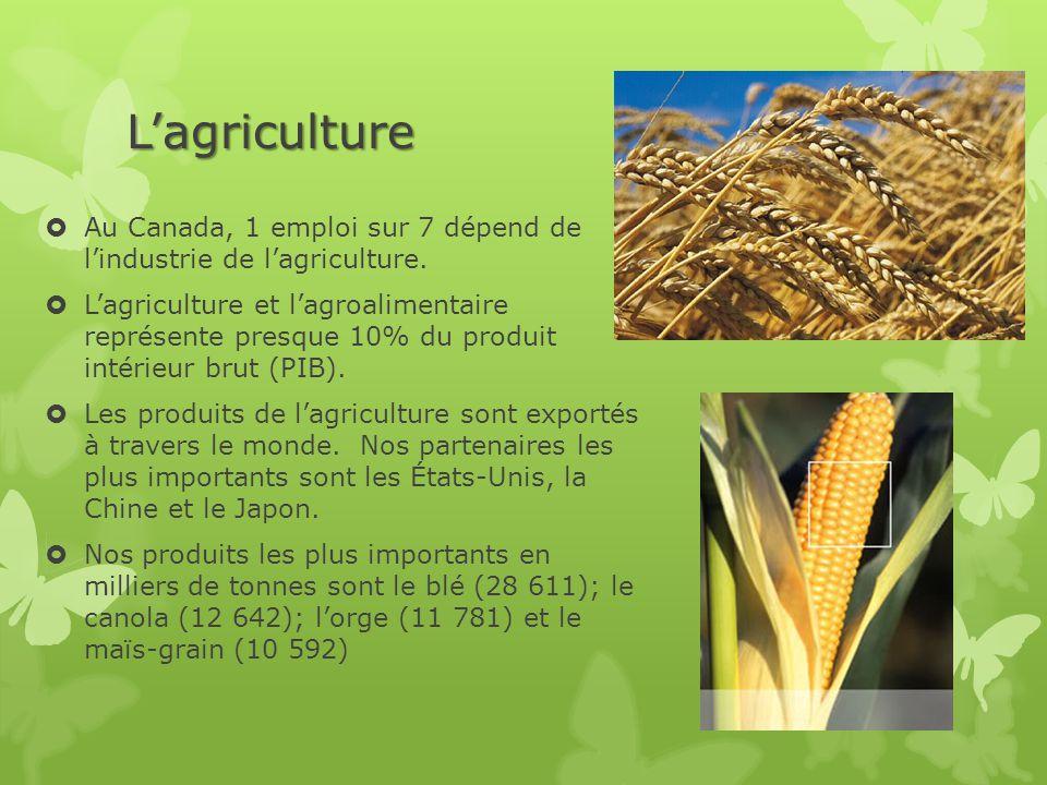 L'agriculture  Au Canada, 1 emploi sur 7 dépend de l'industrie de l'agriculture.  L'agriculture et l'agroalimentaire représente presque 10% du produ