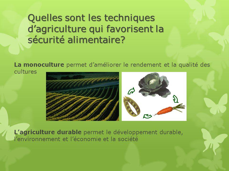 Quelles sont les techniques d'agriculture qui favorisent la sécurité alimentaire? La monoculture permet d'améliorer le rendement et la qualité des cul