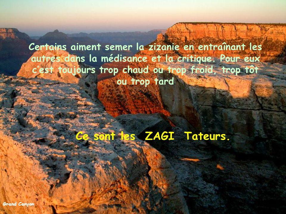 Grand Canyon Puis il y a les autoritaires qui aiment donner les ordres et dire aux autres ce qu'il faut faire, sans jamais mettre eux-mêmes la main à