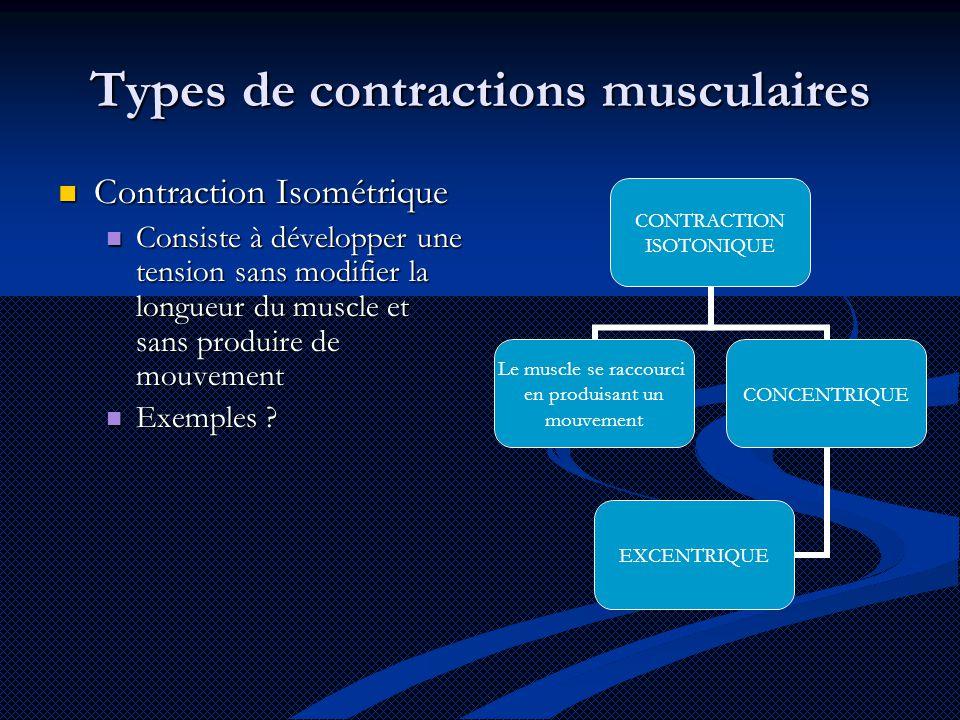 Types de contractions musculaires Contraction Isométrique Contraction Isométrique Consiste à développer une tension sans modifier la longueur du muscle et sans produire de mouvement Consiste à développer une tension sans modifier la longueur du muscle et sans produire de mouvement Exemples .