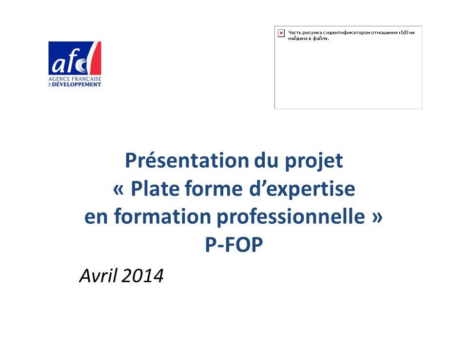 Présentation du projet « Plate forme d'expertise en formation professionnelle » P-FOP Avril 2014