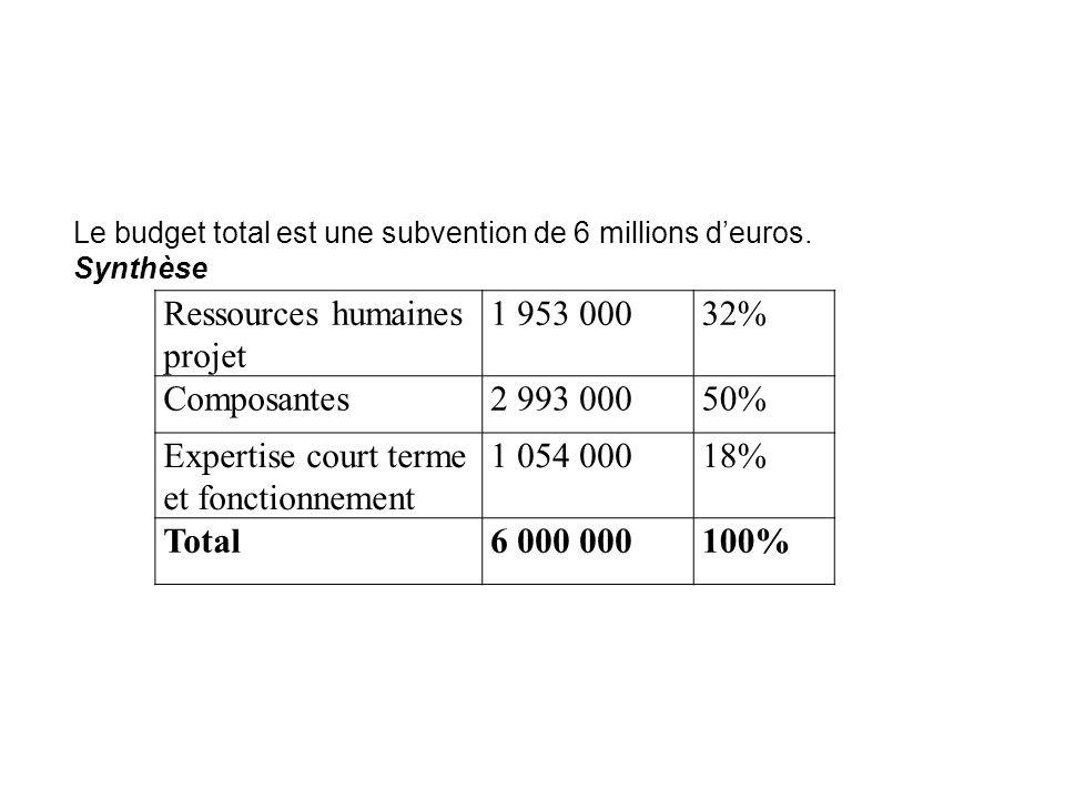 Ressources humaines projet 1 953 00032% Composantes2 993 00050% Expertise court terme et fonctionnement 1 054 00018% Total6 000 000100% Le budget tota