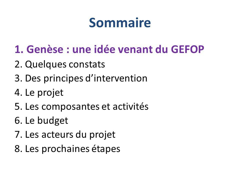 Sommaire 1.Genèse : une idée venant du GEFOP 2. Quelques constats 3.